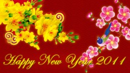 Tet, Vietnam's Lunar New Year – is coming! Special 20% OFF promotion
